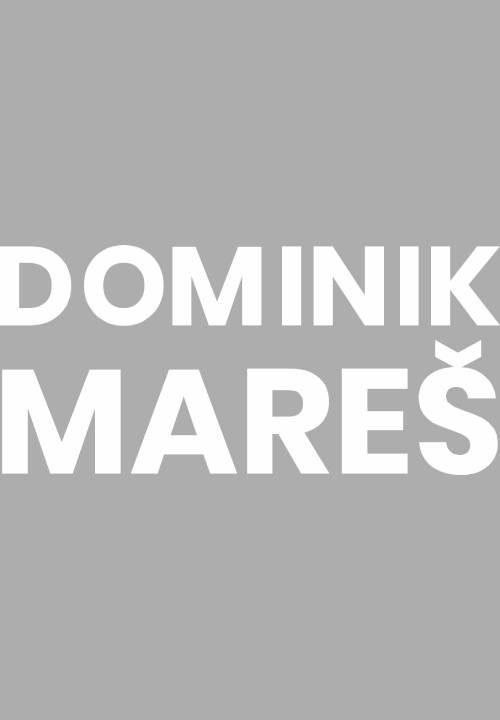 Dominik Mareš